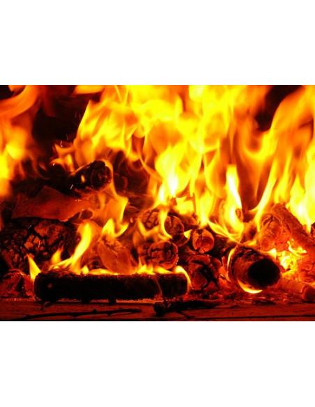 Carbone e legna
